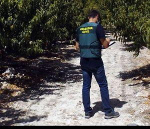 Localizan en Orihuela a tres sospechosos de hasta 11 delitos por estafa a agricultores