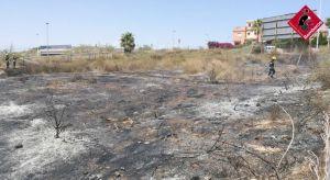 Un incendio calcina 5.000 m2 de matorral en Torrevieja