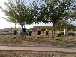 El Centro Especial de Empleo de Adis se hace cargo de la limpieza de las zonas verdes en Bigastro