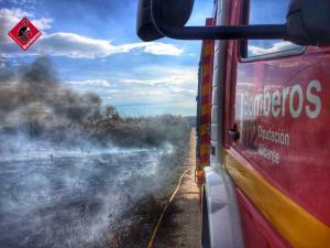 Un incendio quema matorral y cañas en la huerta de Rojales