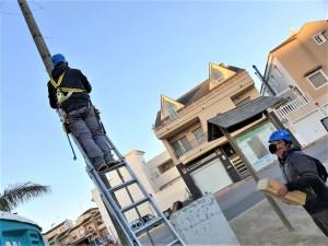 Rojales instala 30 nuevas cajas refugio de murciélagos para el control biológico de insectos