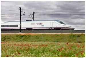 Los trenes AVE que unen Orihuela y Madrid superan los 2.600 viajeros en su primer mes
