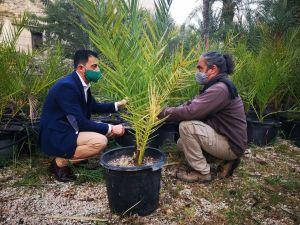 Medio Ambiente organiza un programa para implicar a los escolares en el futuro del Palmeral