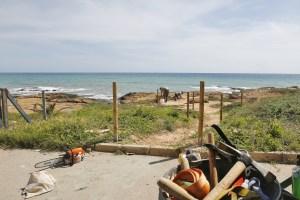 Comienza una actuación medioambiental en Cabo Cervera para delimitar recorridos peatonales básicos dentro de esta área de Torrevieja