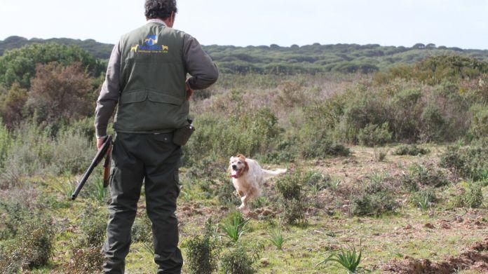 El Plan andaluz de caza, a consulta pública