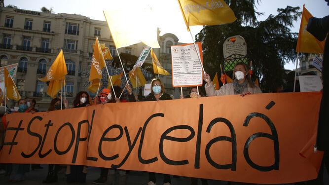 Protestas contra la ley Celaá a las puertas del Congreso.