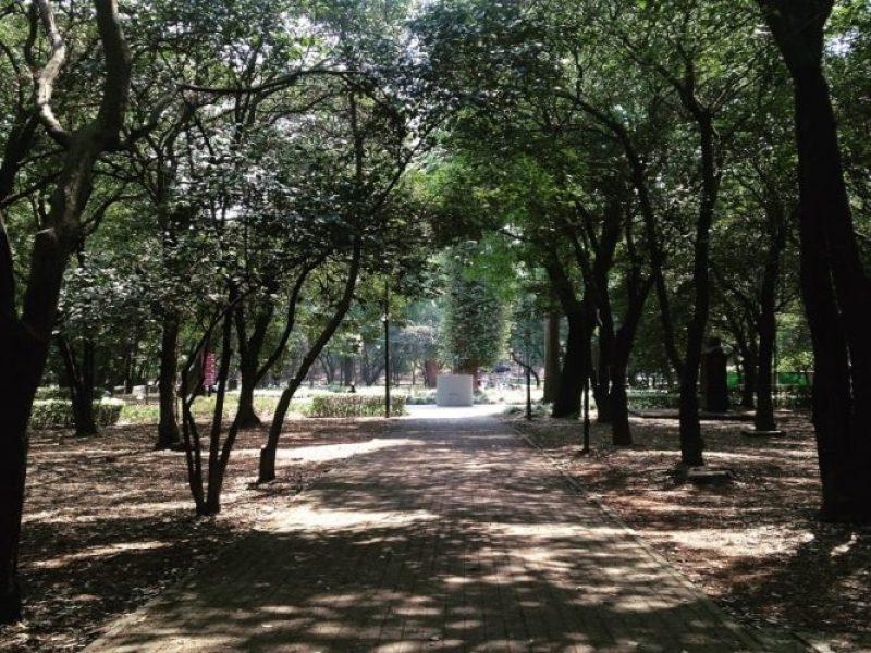 Correr por el bosque de Chapultepec en México DF