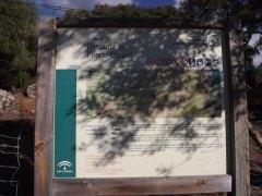 dscf4291 - De Camping en Alcala de los Gazules: Todo un éxito!