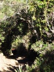 dscf4390 - De Camping en Alcala de los Gazules: Todo un éxito!