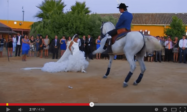 Video Baile de caballo con novia