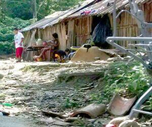 Índios vivem em área de preservação ambiental em São Vicente