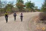 eco_pedal_bike (59)