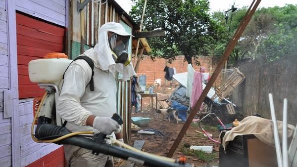 Ministerio-Salud-Misiones-fumigacion-prevenir_CLAIMA20160105_0156_28