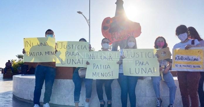 Hoy marchan en La Paz para exigir justicia por la muerte de Luna