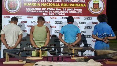 Photo of GNB capturó a cuatro personas dedicadas al robo de ganado en el estado Bolívar