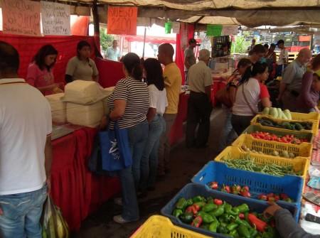 Precio del tomate sorprende a tequeños. Foto: Archivo