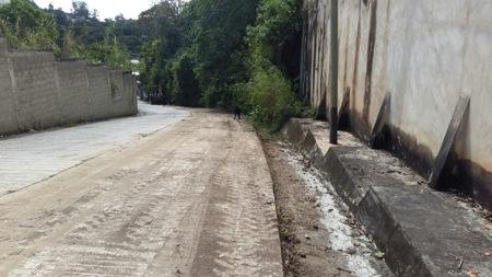La Dirección de Infraestructura e Ingeniería junto a Servicios Públicos hará desmalezamiento próximamente en la calle Las Industrias