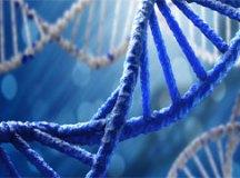 Genômica: a ciência que rompe fronteiras e desafia os cientistas