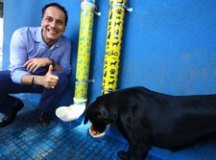 Prefeito Atila instala comedouro para animais no Centro de Mauá