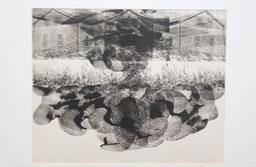 Exposição da Pinacoteca de São Caetano celebra os 50 anos da Fundação das Artes