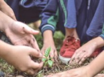 Escolas de R.Pires comemoram Dia do Meio Ambiente