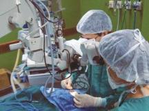 Doação cresce 7%, e governo prevê recorde em transplantes