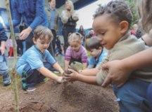 Atividade faz parte das ações do programa Escola Amiga do Meio Ambiente, que desde março já promoveu plantios em 16 unidades da rede municipal. Foto: Alex Cavanha/PSA