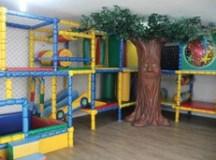 Colégio infantil inova com Árvore Interativa, que fala, encanta os alunos e auxilia no aprendizado
