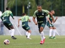 Palmeiras encara Ponte Preta antes de volta para casa