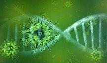 Planos de saúde serão obrigados a cobrir teste sorológico para coronavírus. Foto: Pixabay