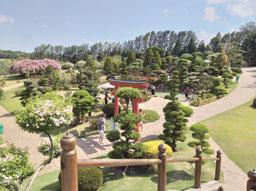 Parque Maeda retoma suas atividades em Itu. Foto: Anderson Amaral