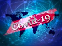 Covid-19: Brasil passa das 210 mil mortes causadas pela pandemia. Foto: Pixabay