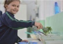Novo cardápio contemplará o aumento da oferta de frutas, legumes e verduras. Foto: Divulgação/PMERP