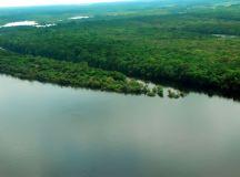 Sob gestão Bolsonaro, multas pagas por crimes ambientais na Amazônia caíram 93%. Foto: Marlo Oliveira/MTUR