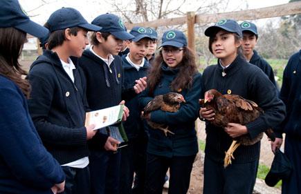 Programa de Educación Sustentable benefició a más de 17 mil profesores y alumnos en 2013