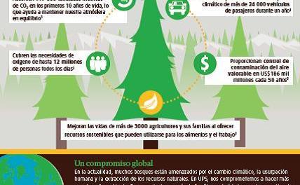 UPS plantará miles de  árboles durante el 2015 con participación de sus trabajadores