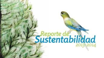 Tinguiririca Energía lanza su cuarto reporte de sustentabilidad