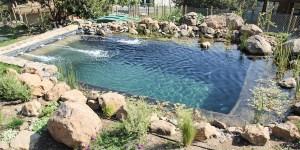 Chilenos construyen innovadoras piscinas naturales de agua cristalina