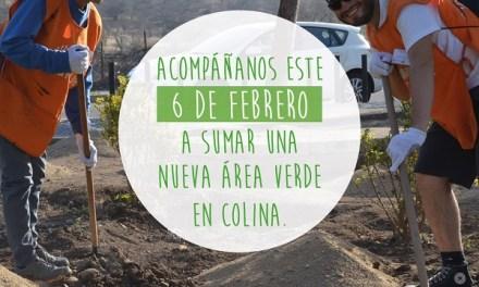 Fundación Mi Parque necesita voluntarios para sumar una nueva área verde en Colina