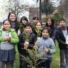 Entregan 6 mil árboles nativos a ciudadanos e instituciones de Temuco