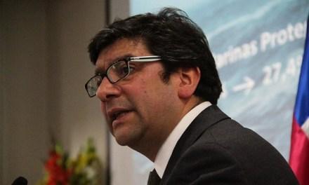 Ministro de Medio Ambiente reconoce que será difícil fiscalizar prohibición de leña en Santiago