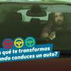 """""""¡Más Vivaldi, Fitipaldi!"""": la campaña para ahorrar bencina al manejar"""