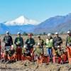Chile lidera certificación forestal en Latinoamérica