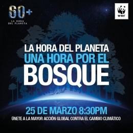 En esta Hora del Planeta piden más esfuerzos de Chile para efectividad del Acuerdo de París