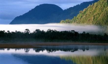 Consejo de Ministros para la Sustentabilidad ratifica creación de la Red de Parques de la Patagonia