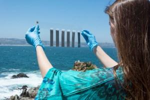 Investigación nacional podría convertir a Chile en líder de innovación en energías marinas