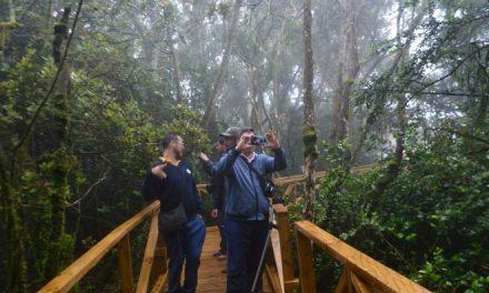 Nueva infraestructura de Parque Nacional Bosque Fray Jorge da un fuerte impulso al turismo