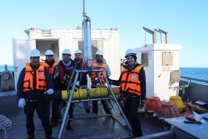 Estudian ballenas azules para determinar su distribución en la Patagonia chilena