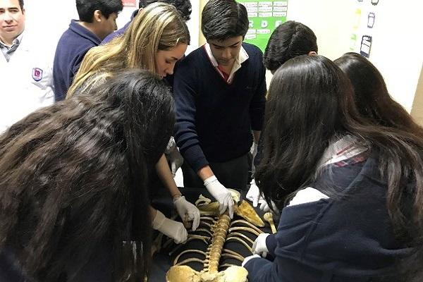 Escolares aprendieron sobre anatomía en entretenido laboratorio móvil