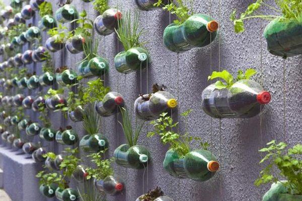 Transforma tu vivienda en una casa verde y ecológica